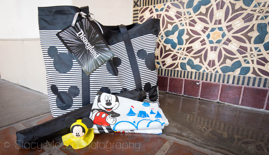 8 Tips for Rainy Days at Disneyland