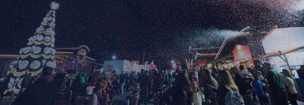 Winter Fest Orange County 2016