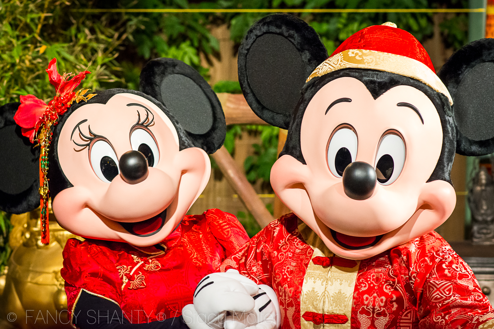 Disneyland Resort Lunar New Year Celebration 2017