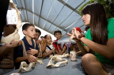 Homeschool Days at the Aquarium of the Pacific