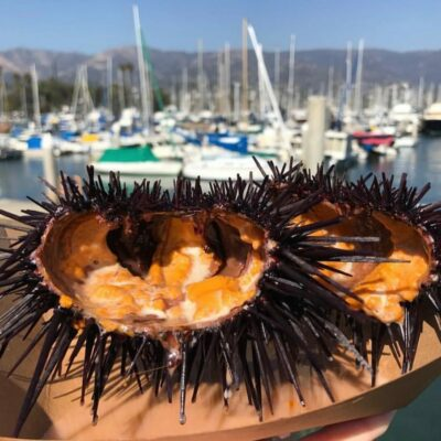 Santa Barbara Harbor and Seafood Festival