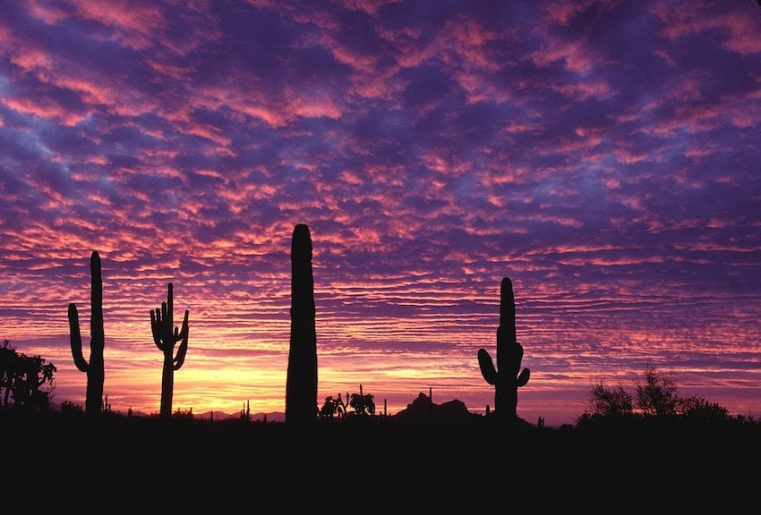 What happens if you die without an estate plan in Arizona?