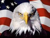 American Bald Eagle in front of flag looking fierce