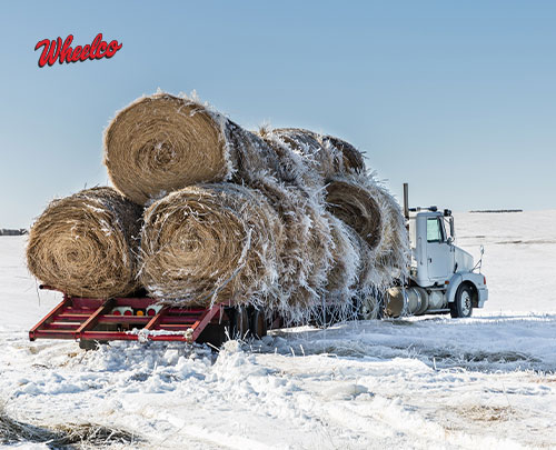 Wheelco's Semi-Annual Buyer's Guide: Heavy Duty Solutions in The Palm of Your Hands