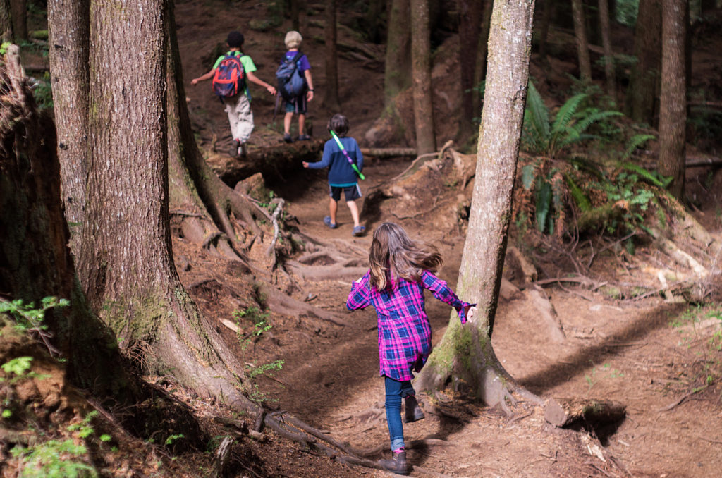 kids hiking in the forest, Juan de Fuca Provincial Park