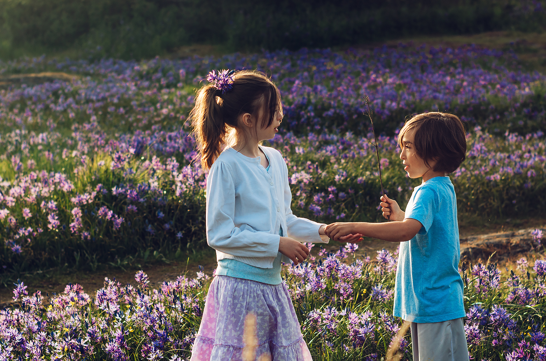 children holding hands in a field of flowers