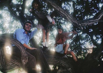 1972 Friends In Tree