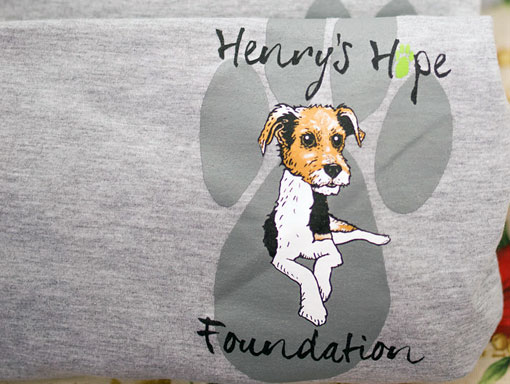 Henry's Hope Foundation - T-shirt front logo