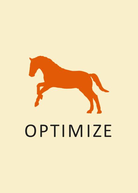 Optimize - Stamp - V - LBG