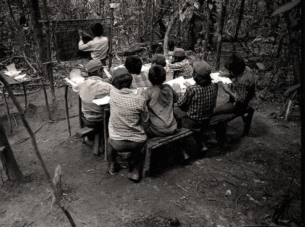 jungle classroom