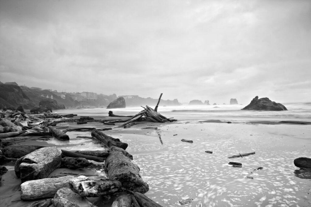 Bandon Beach Logs