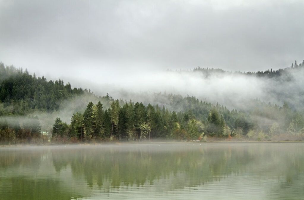 Mist Over Selmac Lake