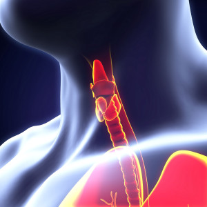 Thyroid surgery minnesota