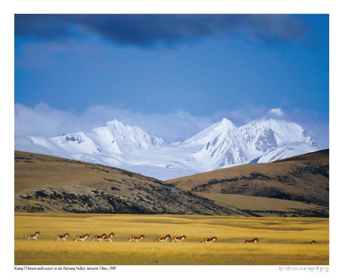 My Tibet calendar