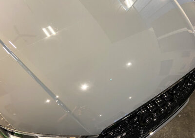 Dustbusters - Auto Detailing - Services - XPEL Paint Protection Film - Red Deer, Alberta