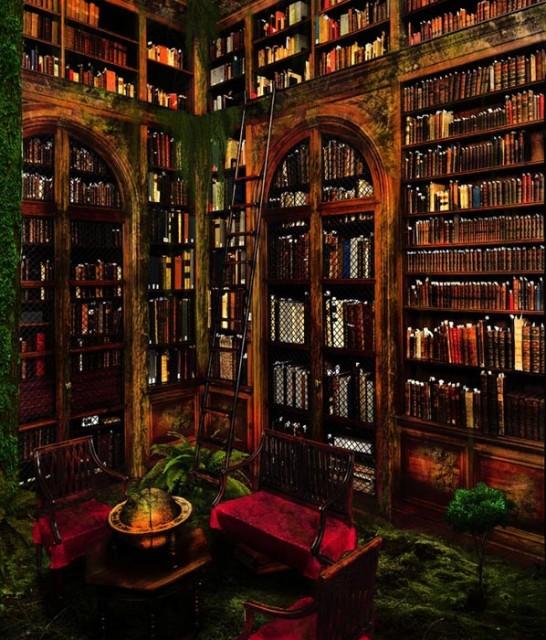 big-beautiful-libraries (21)