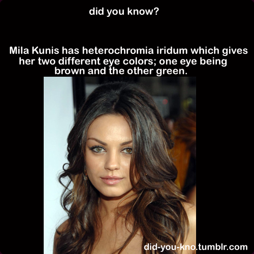 Did You Know? Weird Facts