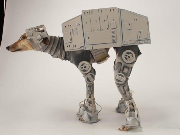dog-star-wars-costume (13)