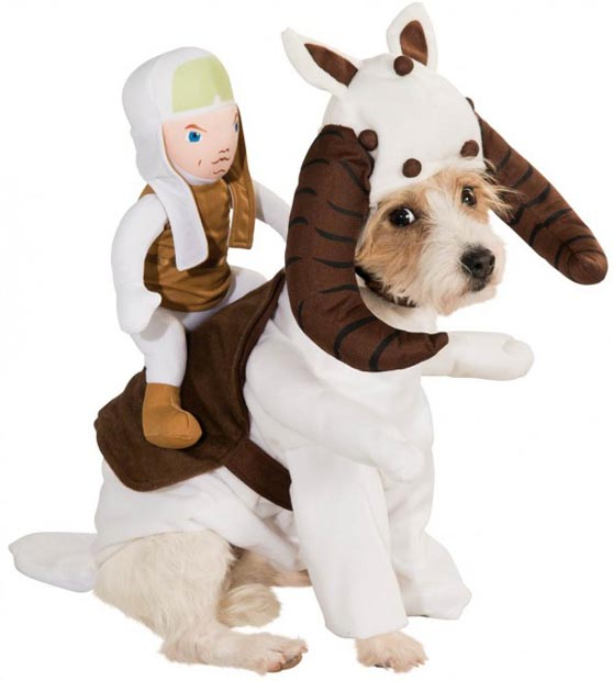dog-star-wars-costume (14)