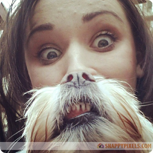 Dog Owners with their Impressive Dog Beards