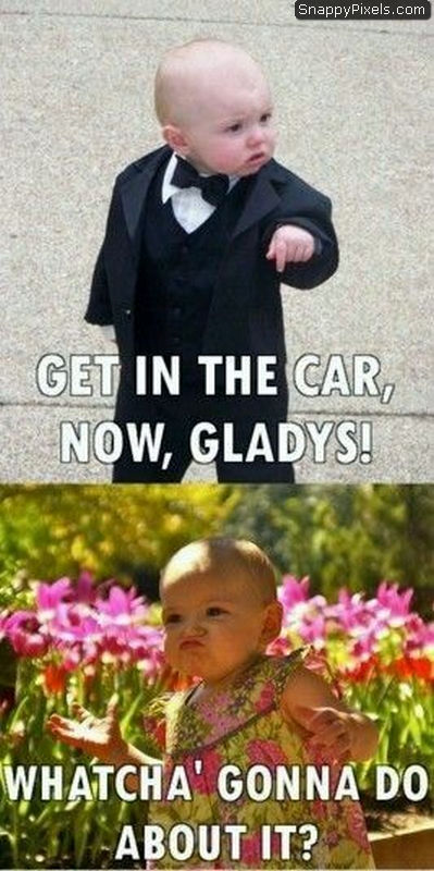 funny-pictures-18
