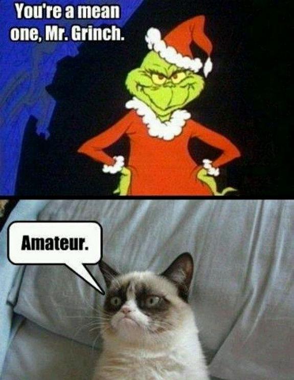 grumpy-cat-meme-sadden-your-day (19)