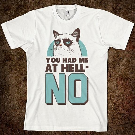 grumpy-cat-meme-sadden-your-day (2)