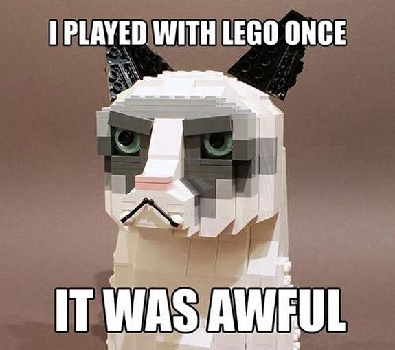 grumpy-cat-meme-sadden-your-day (26)