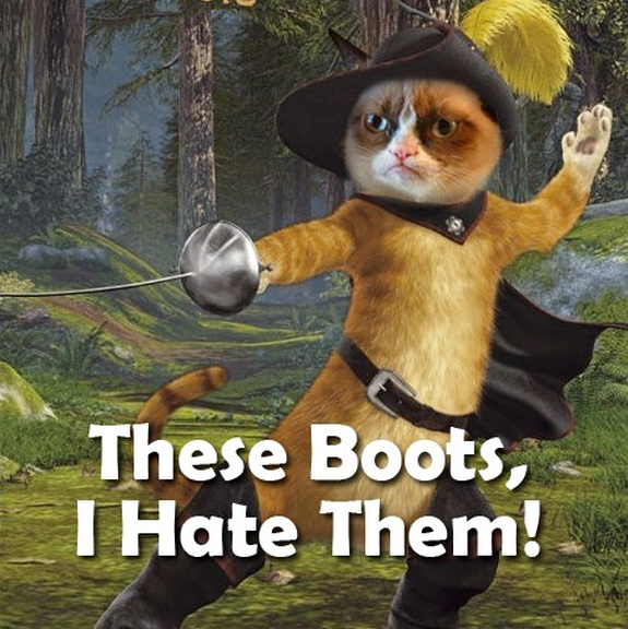 grumpy-cat-meme-sadden-your-day (30)