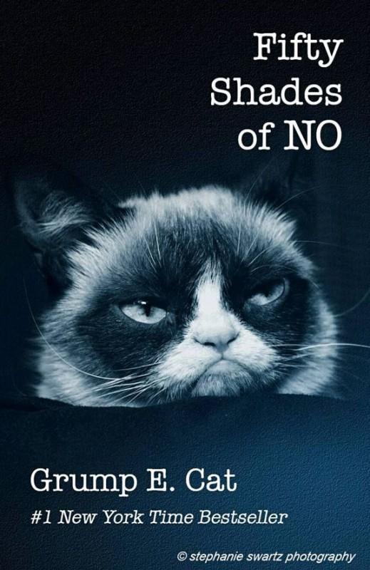 grumpy-cat-meme-sadden-your-day (33)