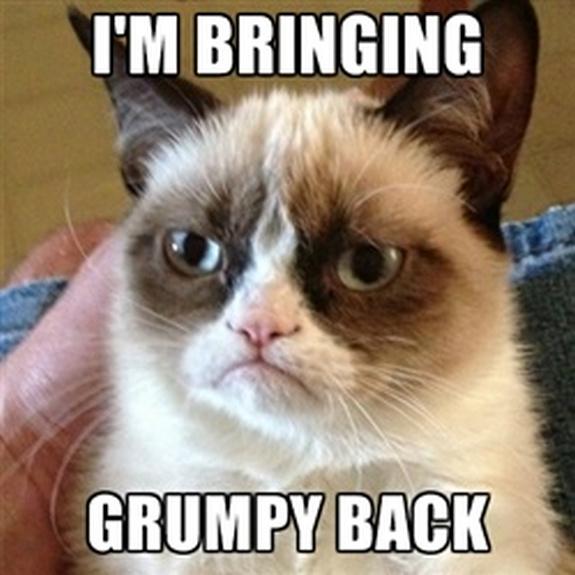 grumpy-cat-meme-sadden-your-day (6)