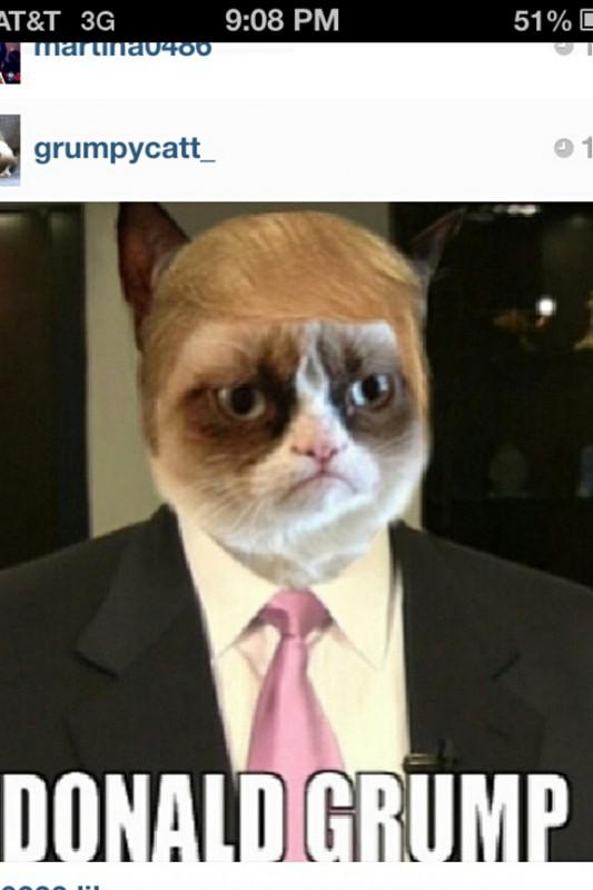 grumpy-cat-meme-sadden-your-day (8)