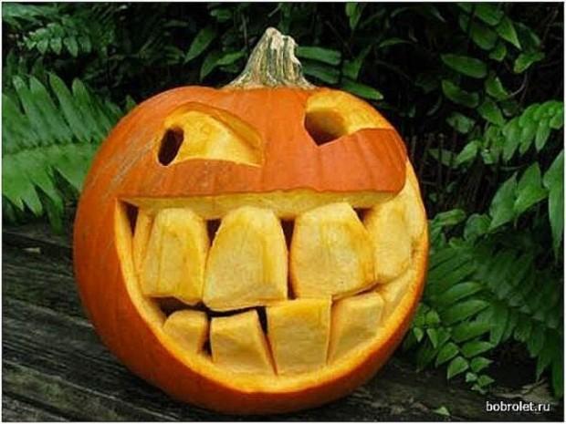 funny pumpkin34