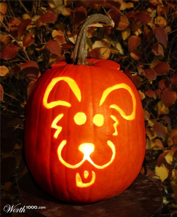 funny pumpkin5