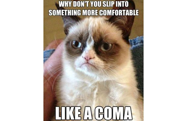 great-grumpy-cat-memes-1