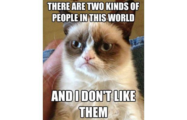 great-grumpy-cat-memes-3