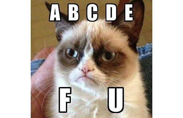 great-grumpy-cat-memes-5