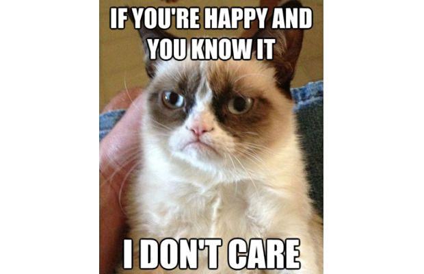 great-grumpy-cat-memes-6
