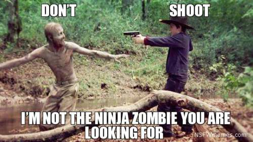 Funny Walking Dead Memes-Part 1