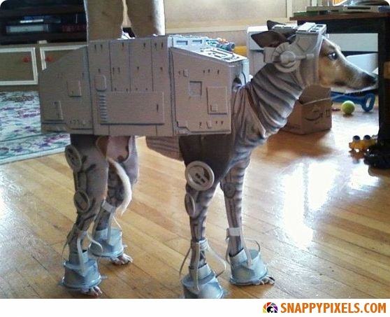 most-clever-halloween-costumes-ever-#18