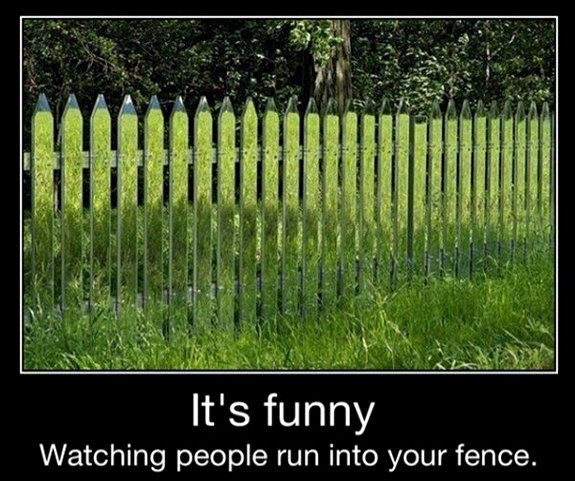 random-funny-picture-dump-16
