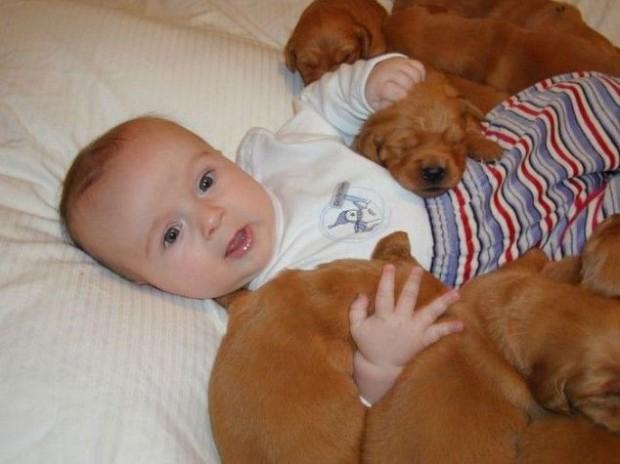 pictures-puppies-babies-16