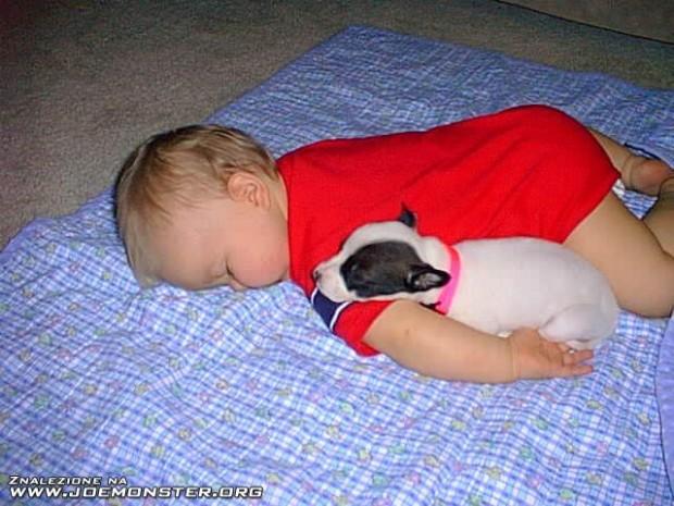 pictures-puppies-babies-19