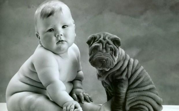 pictures-puppies-babies-26