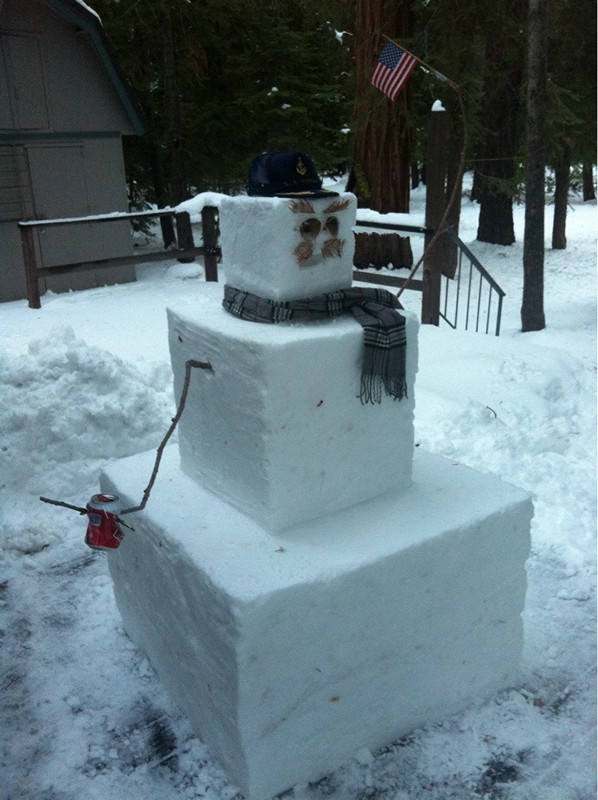 creative-funny-snowman-pictures-12