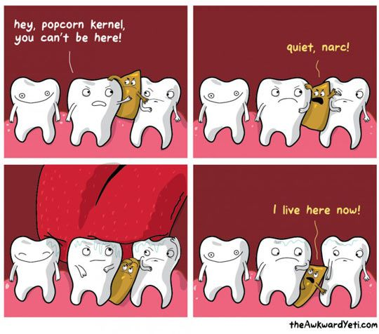 funny-pictures-for-monday-#12