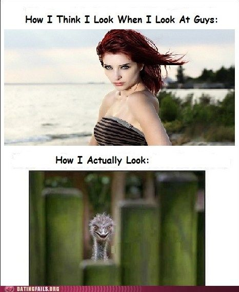 random funny pictures (6)