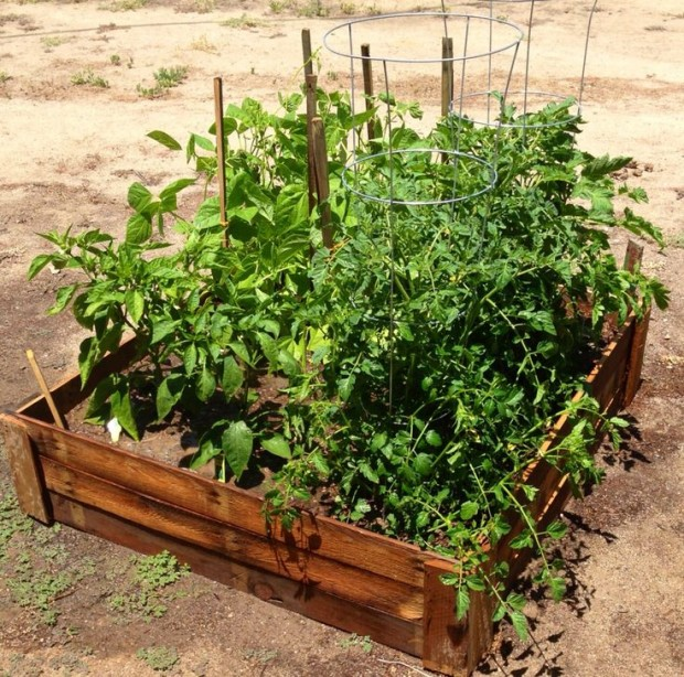 ideas pallets raised garden beds (12)