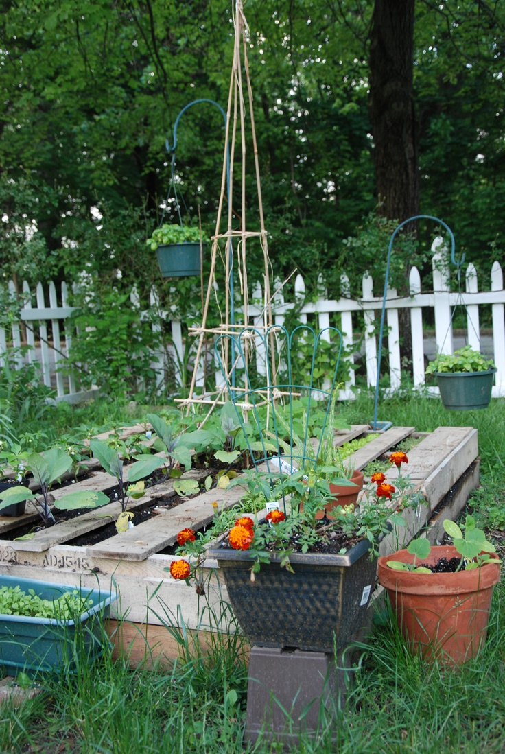 ideas pallets raised garden beds (13)
