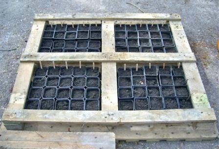 ideas pallets raised garden beds (4)